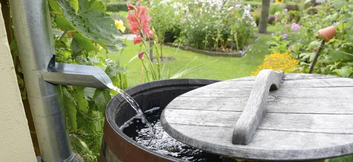 construire des r cup rateurs d eau le wiki de l. Black Bedroom Furniture Sets. Home Design Ideas